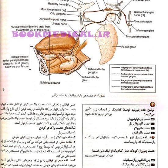 درسنامه علوم پایه پزشکی و دندانپزشکی - آناتومی